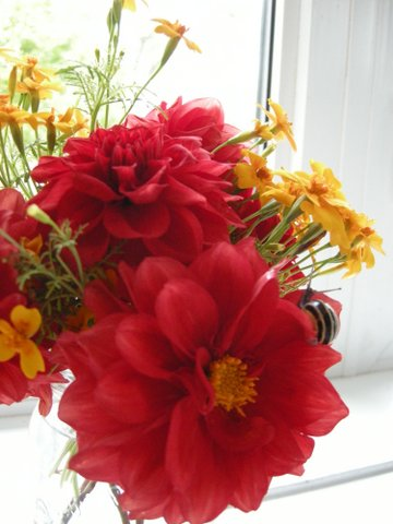 Dahlias and marigolds
